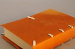 A binding in bright yellow vellum